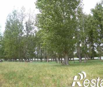 Купить землю, земельный участок на Астраханская область, приволжский район, с. чаган (с/т «шельф») на стыке рек чаган и большой кал